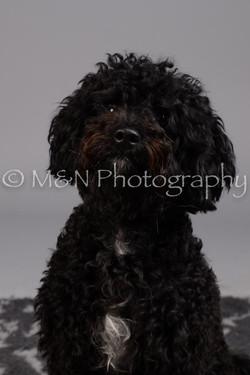M&N Photography -DSC_2642