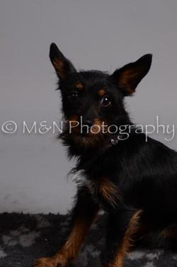 M&N Photography -DSC_2977