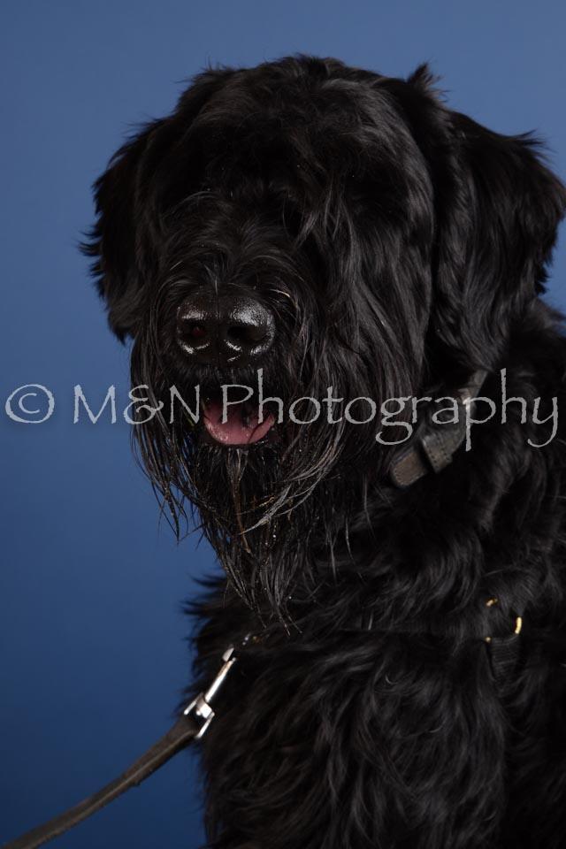 M&N Photography -DSC_4971