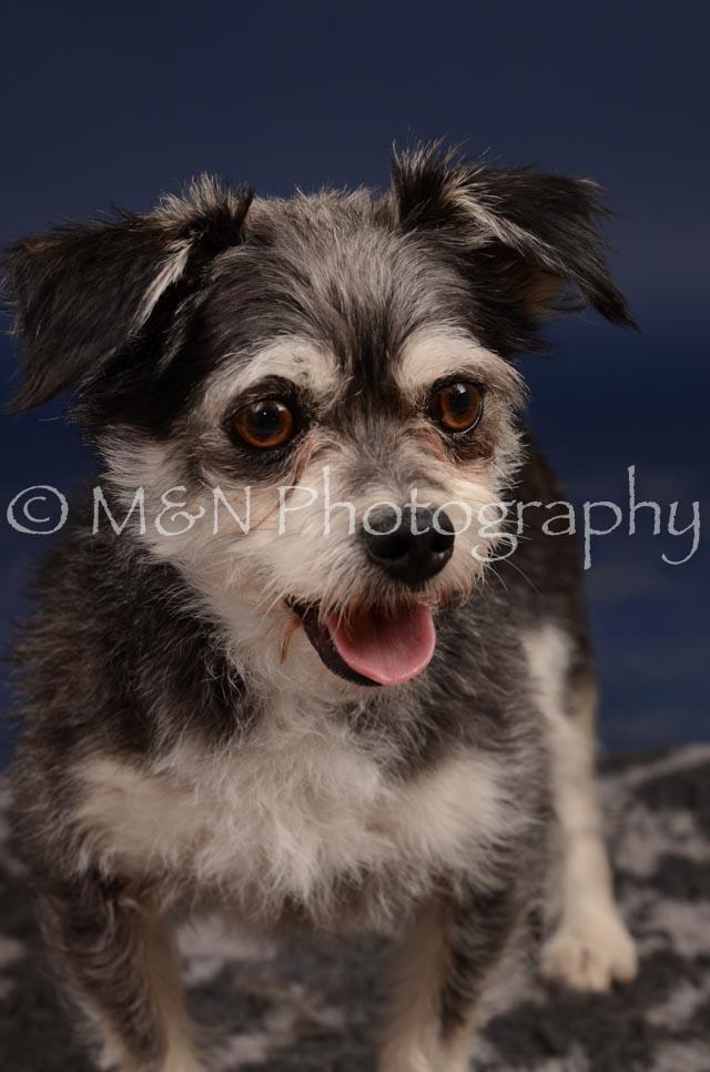 M&N Photography -DSC_0858