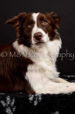 M&N Photography -DSC_5889