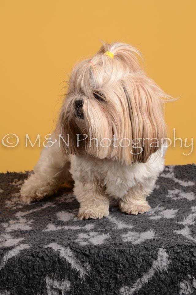 M&N Photography -DSC_4837