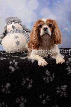 M&N Photography -DSC_6520