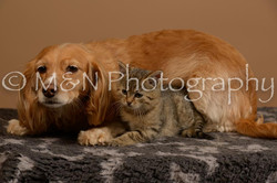 M&N Photography -_SNB0829