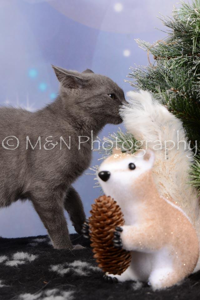 M&N Photography -DSC_6538