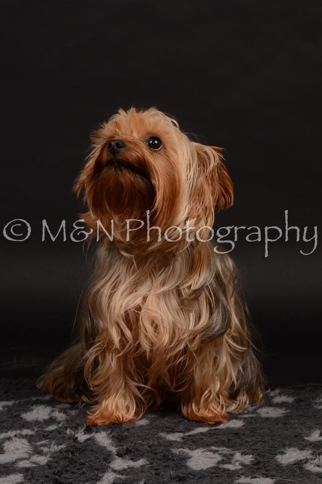 M&N Photography -DSC_9707