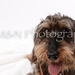 M&N Photography -DSC_9104