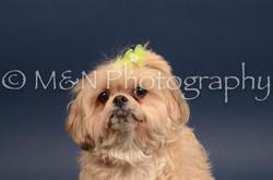 M&N Photography -DSC_4482