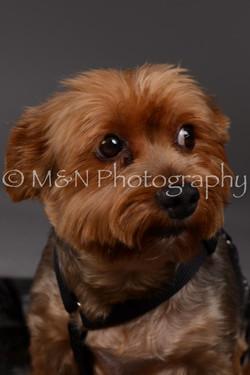 M&N Photography -DSC_2143