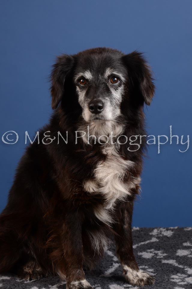 M&N Photography -DSC_4888