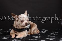 M&N Photography -DSC_5467