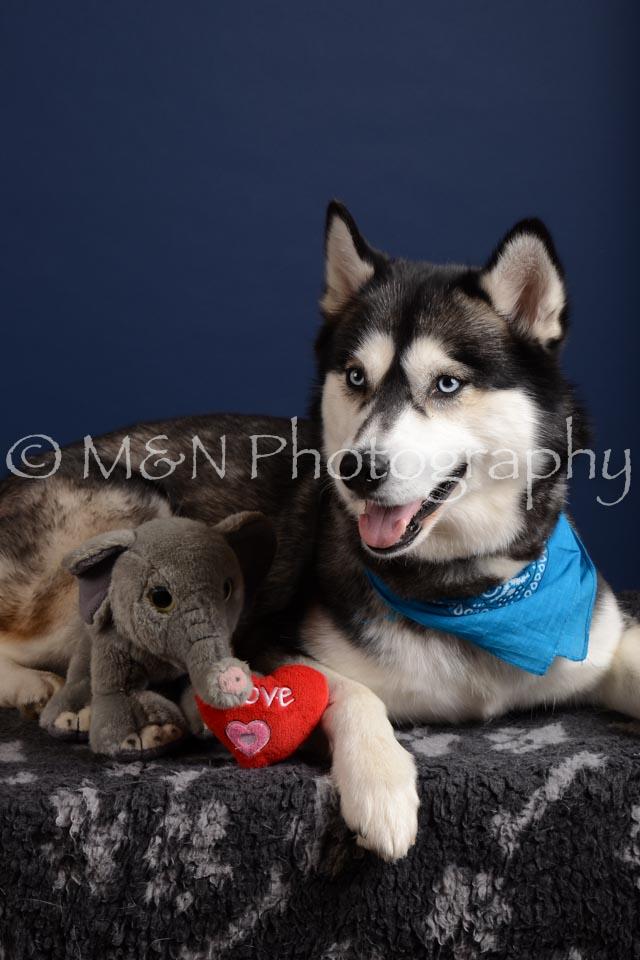 M&N Photography -DSC_4079