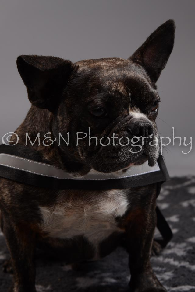 M&N Photography -DSC_1902