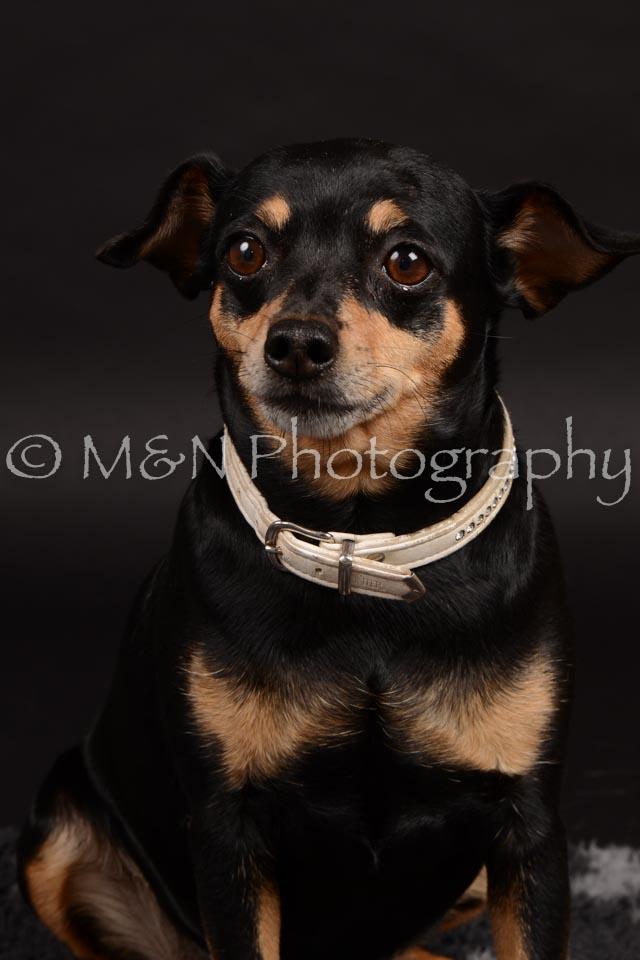 M&N Photography -DSC_9656