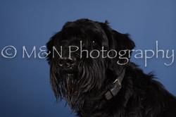 M&N Photography -DSC_4973