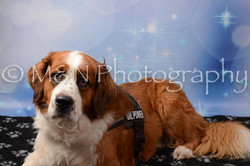 M&N Photography -DSC_7115