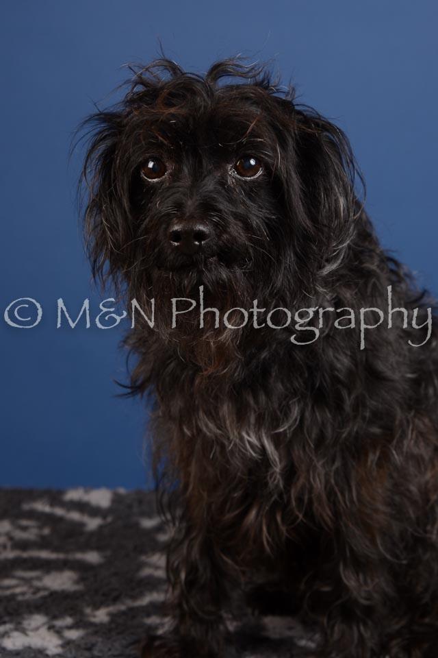M&N Photography -DSC_4994