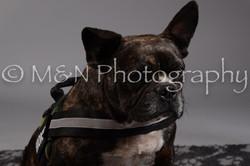 M&N Photography -DSC_1900