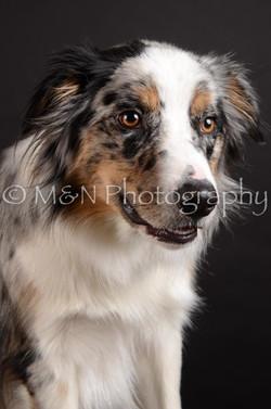 M&N Photography -DSC_5420