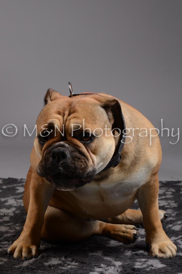 M&N Photography -DSC_1745