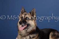 M&N Photography -DSC_5079