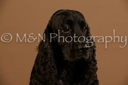 M&N Photography -_SNB0577