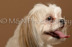 M&N Photography -_SNB0769