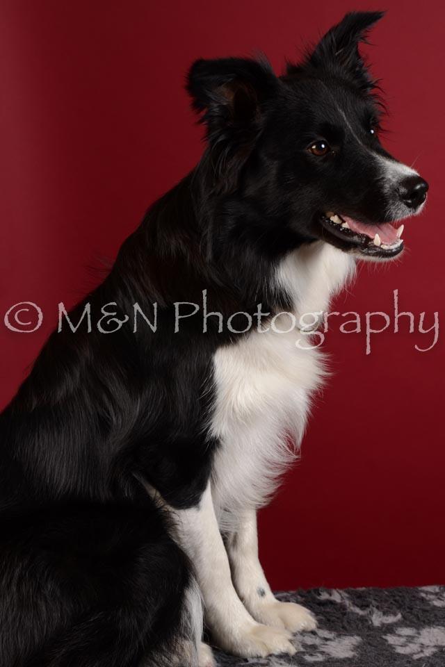 M&N Photography -DSC_3052