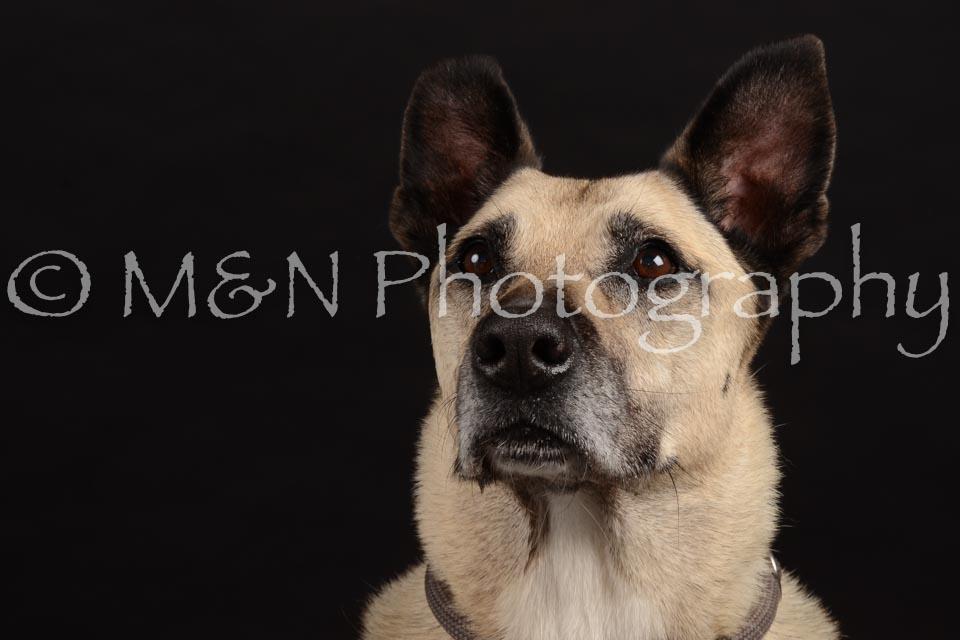 M&N Photography -DSC_9746