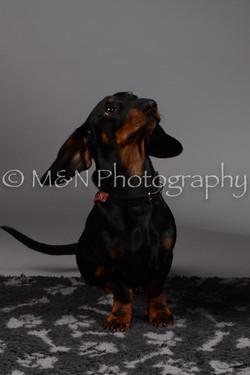 M&N Photography -DSC_1516