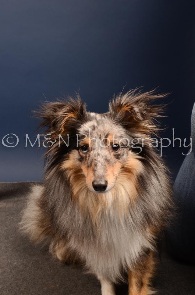 M&N Photography -DSC_4443