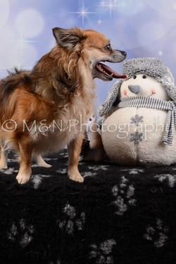 M&N Photography -DSC_6614