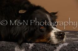 M&N Photography -_SNB0864