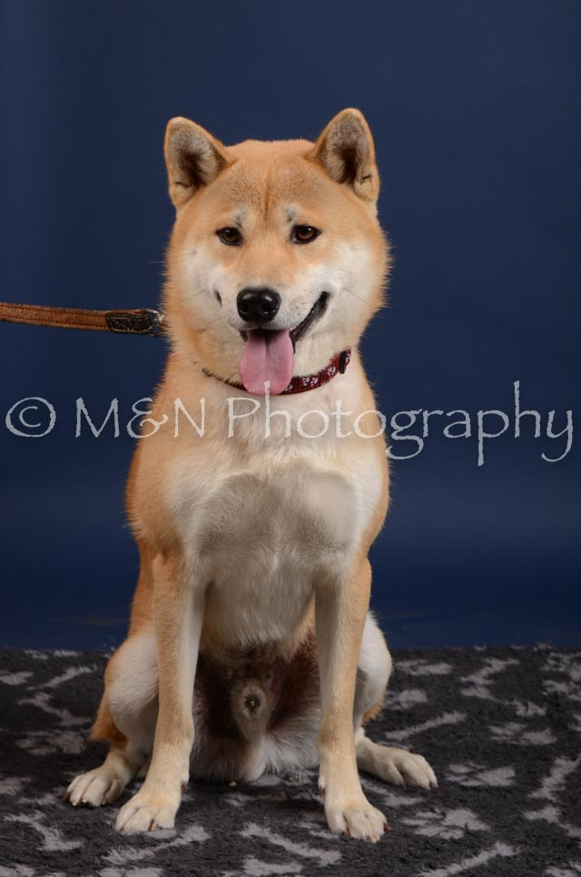 M&N Photography -DSC_3909