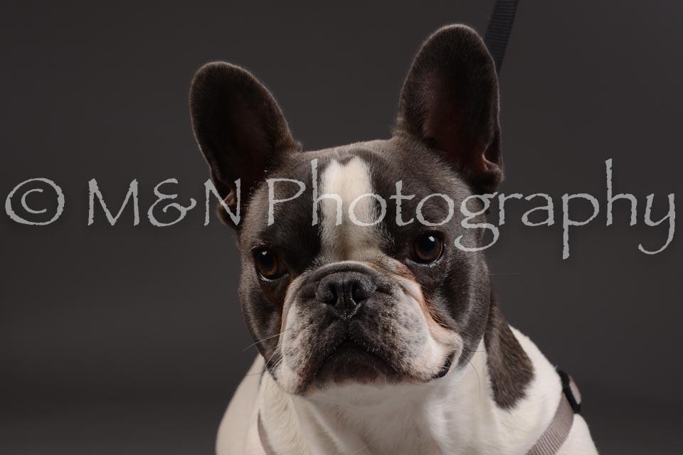 M&N Photography -DSC_2128