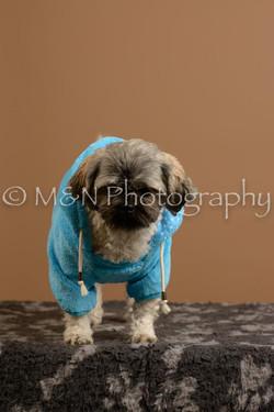 M&N Photography -_SNB0947