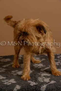 M&N Photography -_SNB0903