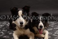 M&N Photography -DSC_9966