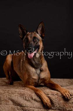 M&N Photography -DSC_5576