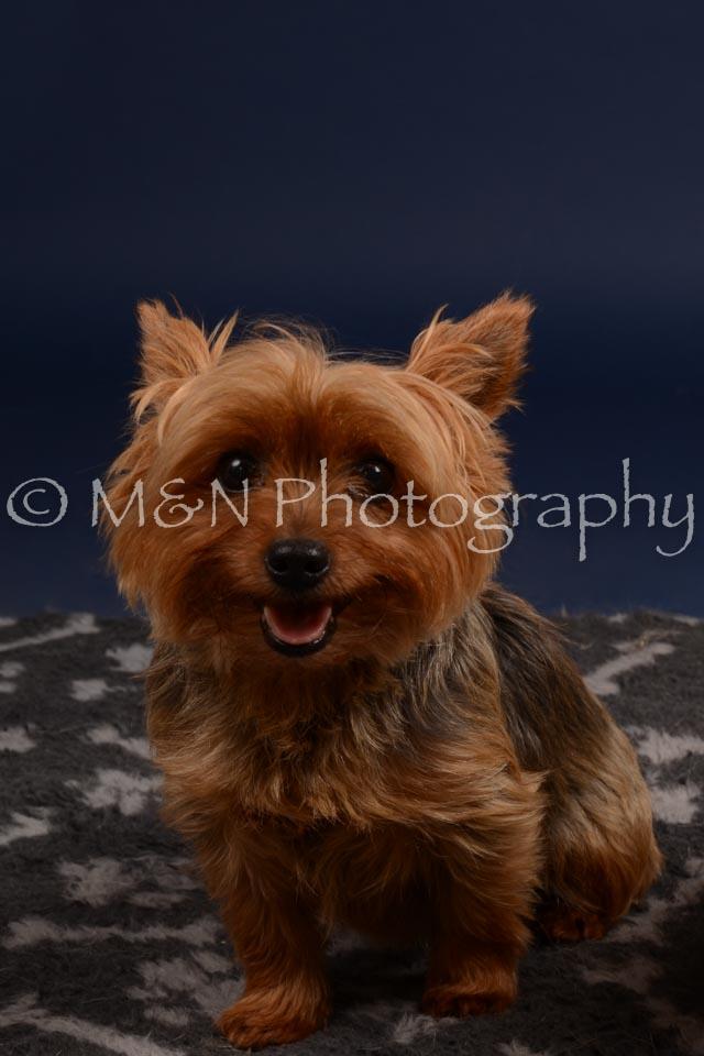 M&N Photography -DSC_0416