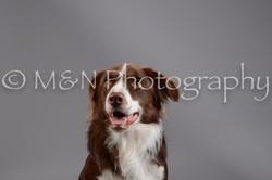 M&N Photography -DSC_1451