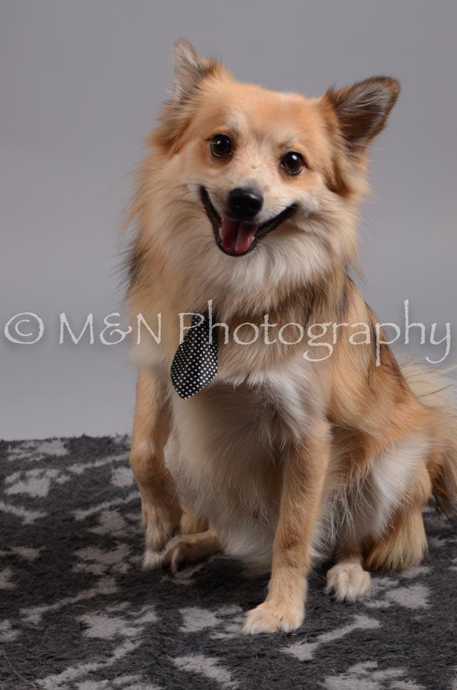 M&N Photography -DSC_2716