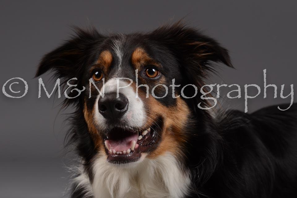 M&N Photography -DSC_2055