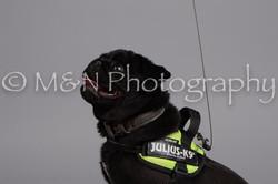 M&N Photography -DSC_2544