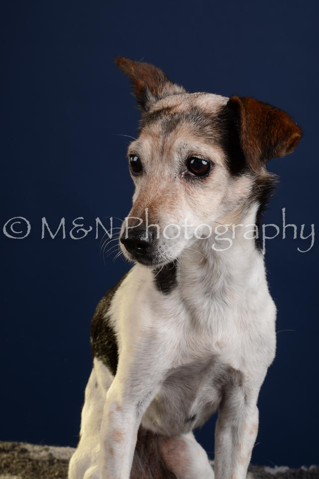 M&N Photography -DSC_3801