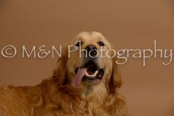 M&N Photography -_SNB0641