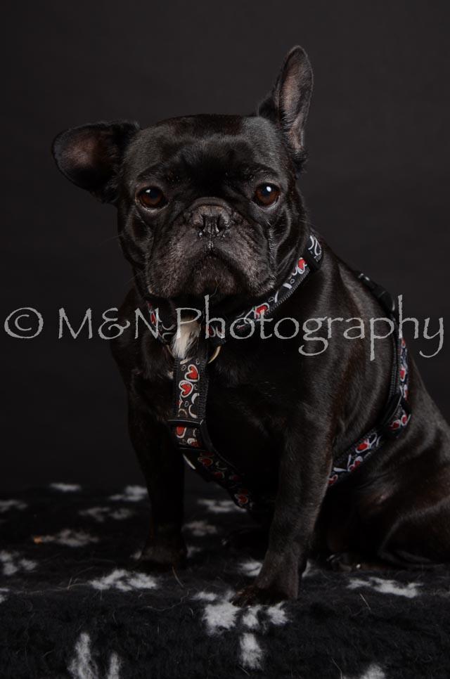M&N Photography -DSC_5664