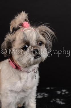 M&N Photography -DSC_5989