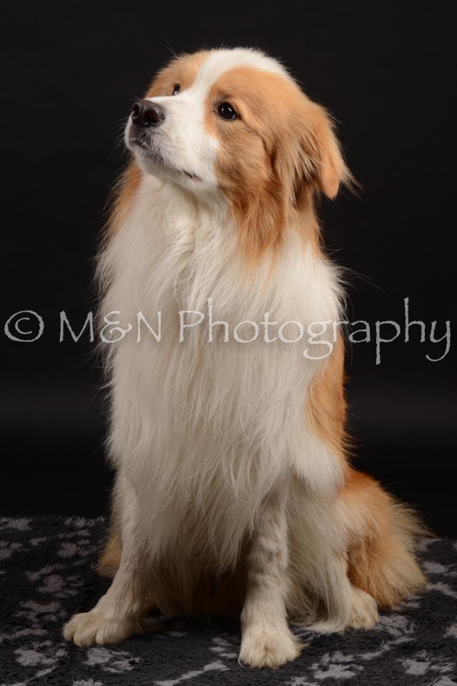 M&N Photography -DSC_9598