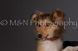 M&N Photography -DSC_2291-2